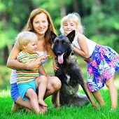stock photo of puppies mother dog  - girl and her little brother playing with dog on grass - JPG