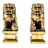 picture of guardian  - a couple of golden chinese guardian lions isolated over a white background - JPG