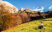 pic of italian alps  - Fall is coming in the italian alps - JPG