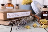 stock photo of roughage  - Medicinal plants book with dried herbs on table close up - JPG