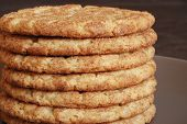 Stack of freshly baked, homemade snickerdoodles.  Close-up with shallow dof.