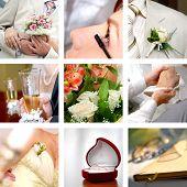 Постер, плакат: цветной Свадебные фотографии набор
