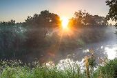 Summer Landscape With River And Sunrise. Foggy Scenery With Sun Sunbeams Shine Through Trees poster