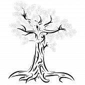 Oak. Vector Illustration Of An Oak Tree With Foliage. Logo Tree Is Oak With Foliage. poster