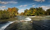 The Niagara River Above Horseshoe Falls With Forest In Fall Colours poster