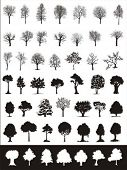 vector collection of trees (2)