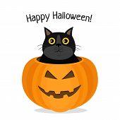 Happy Halloween, Vector Illustration Of Cat Celebrating Halloween. Kitten And Pumpkin poster