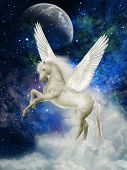 foto of pegasus  - Pegasus in the sky with big clouds - JPG