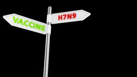 image of avian flu  - Crossroad pointer with new bird flu subtype virus or vaccine way - JPG