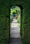 picture of english cottage garden  - Pretty flagstone path through clipped yew archway towards a bench with flowers - JPG