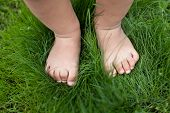 pic of human toe  - Small baby feet on the green grass - JPG