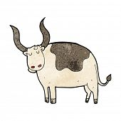 picture of oxen  - cartoon ox - JPG