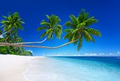 stock photo of samoa  - Tropical Paradise - JPG