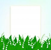 stock photo of day-lilies  - Spring card background with lily of the valley flowers and soft sun lights - JPG