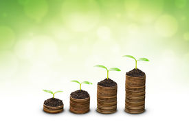 picture of sustainable development  - trees growing on coins  - JPG