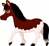 stock photo of pony  - Vector illustration of Cartoon pony horse isolated on white background - JPG