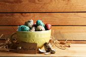 picture of bird egg  - Bird colorful eggs in bowl on wooden background - JPG