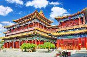 foto of lamas  - Yonghegong Lama Temple - JPG