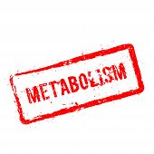 Metabolism Red Rubber Stamp Isolated On White Background. Grunge Rectangular Seal With Text, Ink Tex poster