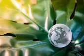 World Globe Cystal Glass On Green Lush Leaf. Environmental Conservation. World Environment Day. Glob poster