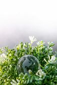 World Globe Cystal Glass On Green Leaves Bush. Environmental Conservation. World Environment Day. Gl poster