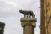 Rome, Italy Column With Capitoline Wolf Statue. Lupa Capitolina Bronze Sculpture Copy Depicting Myth poster