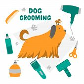 Vector Illustration For Pet Hair Salon, Styling And Grooming Shop, Pet Store For Dogs And Cats. poster
