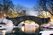 New York City Manhattan Central Park in winter with bridge over lake with snow, ducks and light at d poster