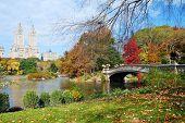 Постер, плакат: Панорама города Нью Йорка Манхэттена Центральный парк в осень озеро с моста небоскребы и красочные tr