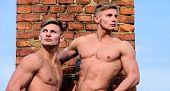 Men Muscular Athlete Bodybuilder Show Muscles. Men Muscular Chest Naked Torso Stand Brick Wall Backg poster