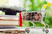 Full Of Money Coin In Mini Shopping Cart Or Trolley With Square Academic Cap On Stack Of Books Again poster