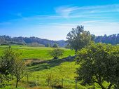 pic of bute  - Landscape panorama view of Piedmont hills in Northern Italy - JPG