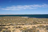 foto of pampa  - Lake in the pampas of Patagonia - JPG