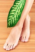 pic of big-foot  - Female feet with big green leaf - JPG