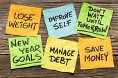 stock photo of handwriting  - New Year goals or resolutions  - JPG