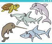 pic of dauphin  - Cartoon Illustration of Sea Life Animals Set - JPG