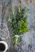 foto of oregano  - Bouquet garni of fresh herbs - JPG