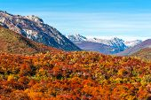 stock photo of negro  - Autumn Colors of Patagonia near Bariloche Argentina - JPG