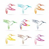 stock photo of hummingbirds  - Vector group of hummingbirds on white background - JPG