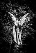 stock photo of cherub  - Angel gravestone full length back view in black and white - JPG