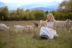 stock photo of shepherdess  - Little shepherdess goats graze on a meadow near the village  - JPG