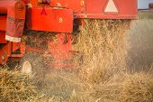 stock photo of harvest  - harvester in a wheat field during summer harvest - JPG