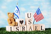 image of israeli flag  - A toy bear sitting on alphabet blocks arranged on a bed of grass to say  - JPG