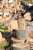 picture of firewood  - Old axe in log on a firewood background - JPG