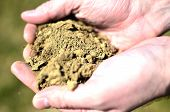 foto of loam  - Background of male hands holding soil on land