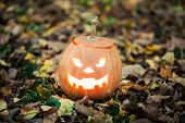picture of jack o lanterns  - Angry halloween jack - JPG