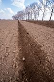 stock photo of plowing  - Large field ready for sowing and plowing action in the spring season - JPG
