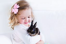 stock photo of couch  - Happy laughing little girl playing with a baby rabbit hugging her real bunny pet and learning to take care of an animal - JPG
