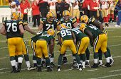 Green Bay Packers encolhido