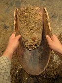 foto of gold panning  - Gold panning with old wooden pan - JPG